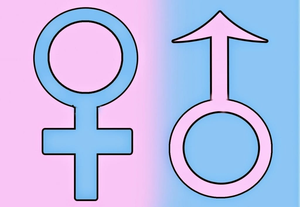Judge rules in unique case male can change to agender as well as change name to Patch