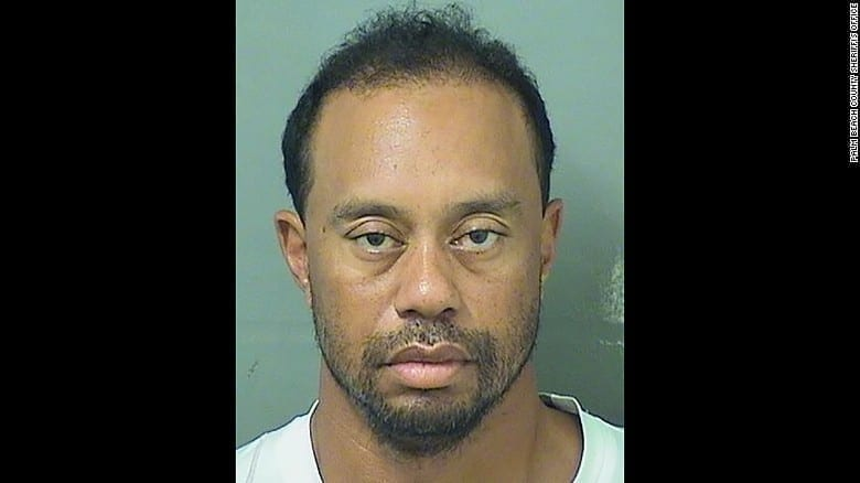 Tiger Woods' mugshot