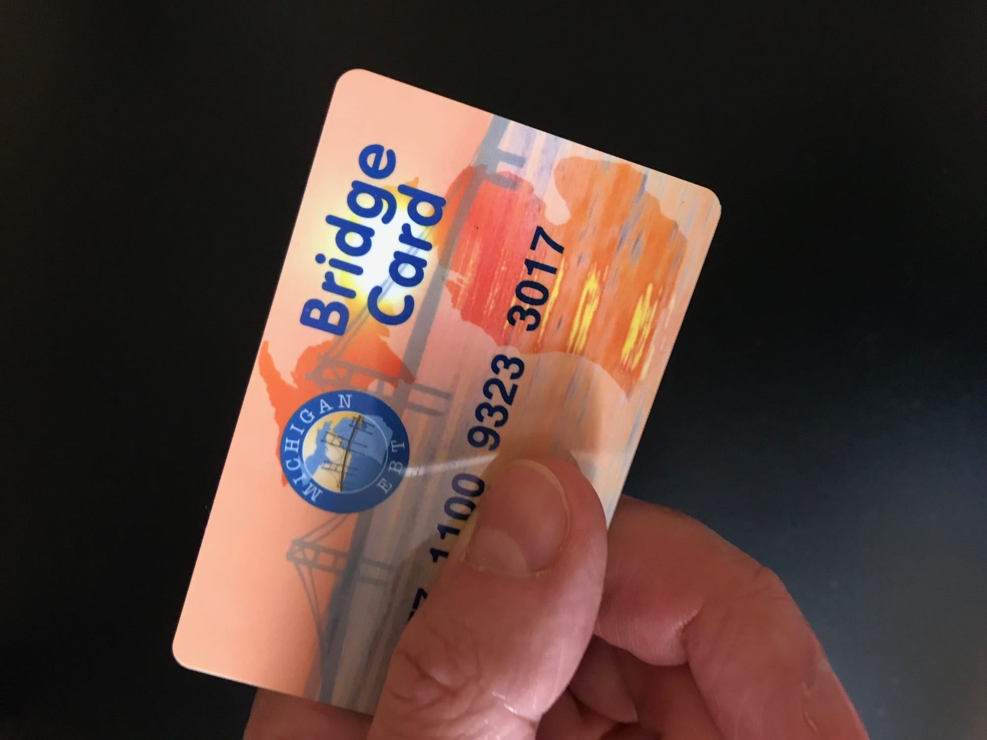 "Food assistance in Michigan is typically deposited onto a ""Bridge Card,"" which functions like a debit card at grocery stores. Image by anonymous artist, CC0."