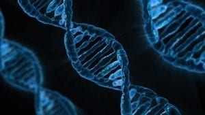 Image of DNA by Publicdomainpictures.net, CC0.