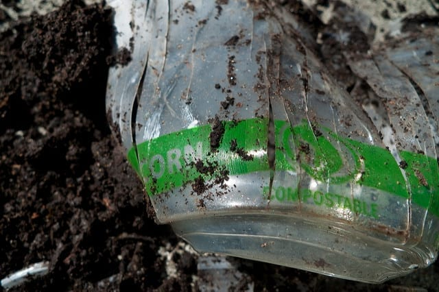 A compostable, corn-based bioplastic cup after two years of home composting.
