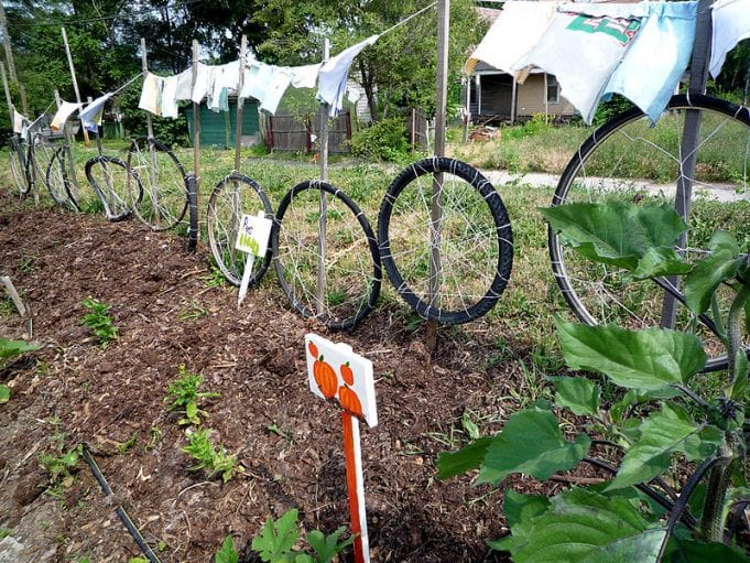 A combined fence, recycled-tire trellis and clothesline at the Earth Works community garden in Detroit.