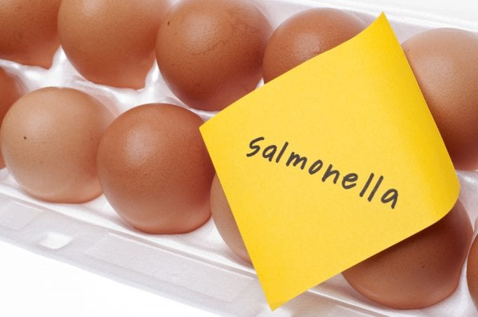 Image of a Carton of Eggs with Salmonella Label
