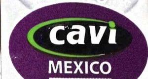 Image of the Recalled Cavi Papaya Label