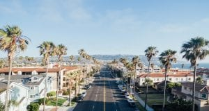 A palm-lined California road; image courtesy of www.thepicta.com.
