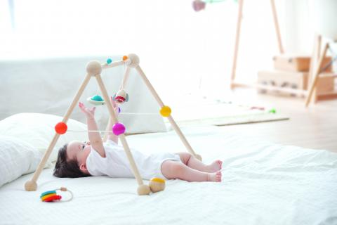 Image of the Recalled PlanToys Play Gym