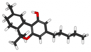 THC molecule; image by Benjah-bmm27, (own work), via Wikimedia Commons, public domain.