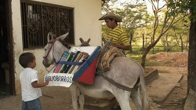 A child approaches a Biblioburro, a donkey carrying books.