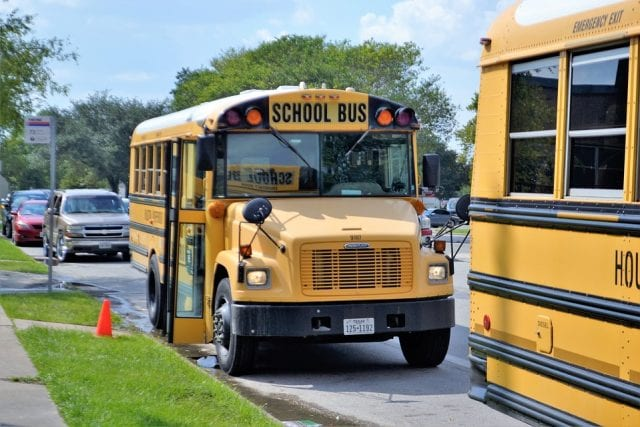 Image of school buses