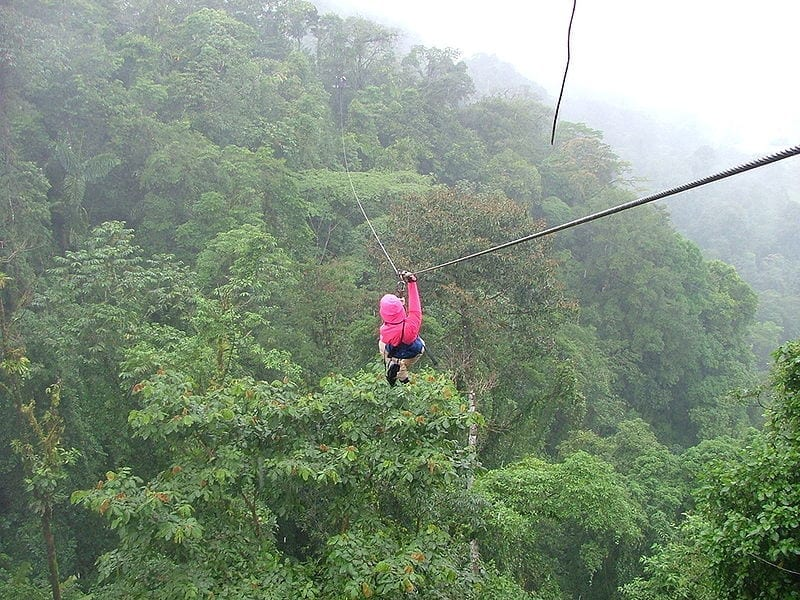 Image of a person ziplining