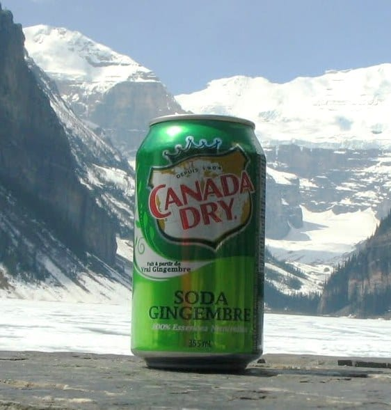 Image of a Can of Canada Dry