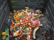 Image of a composting bin