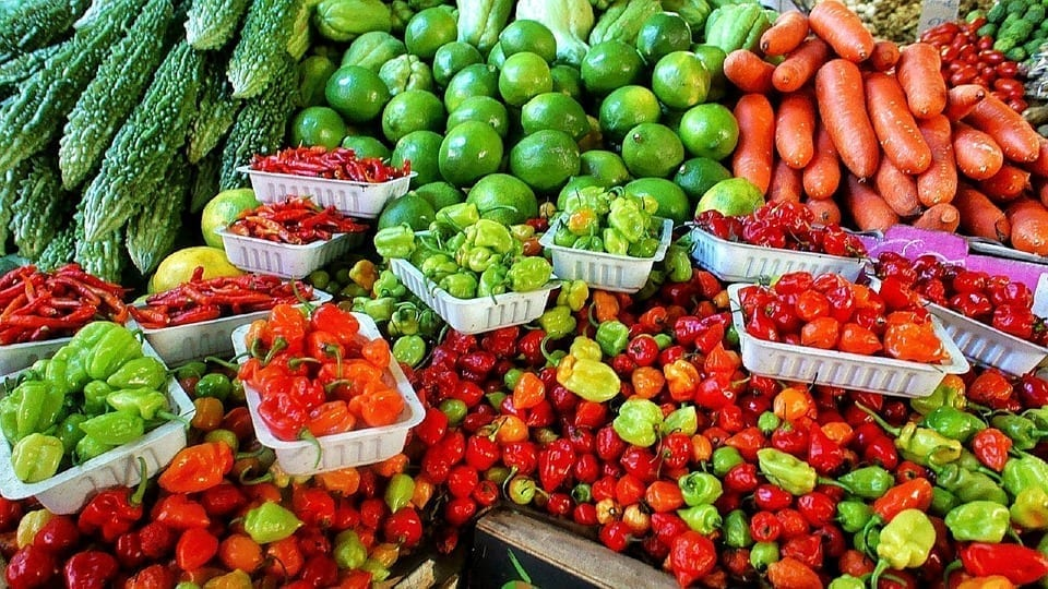 Image of an Assortment of Vegetables