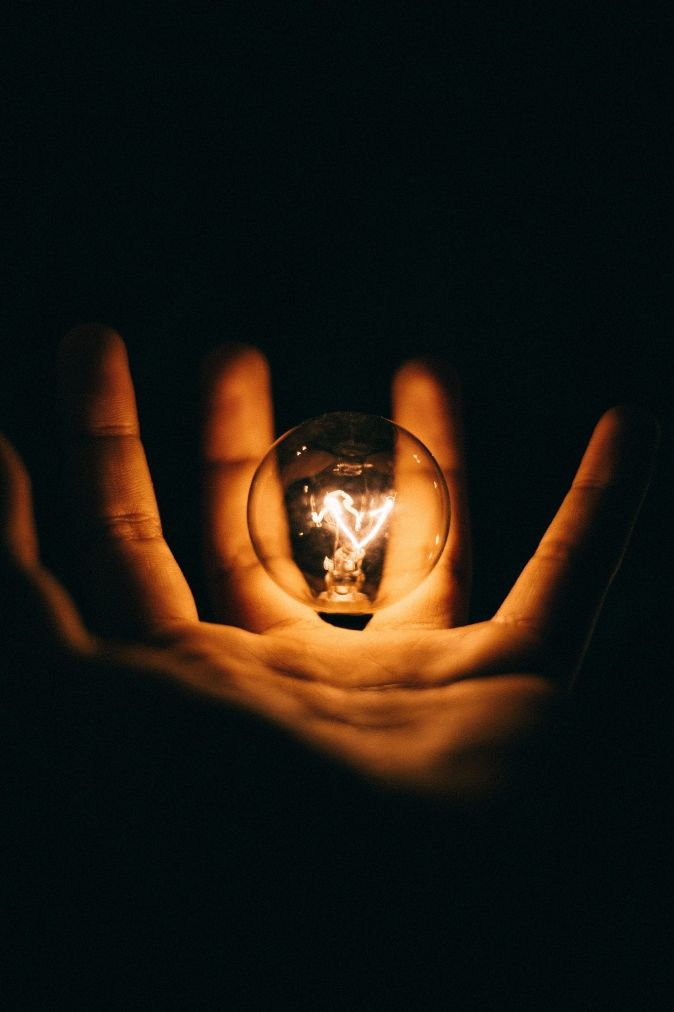 Hand with lightbulb floating above the palm against a dark background; image by Rohan Makhecha, via Unsplash.com.