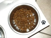 Image of a Bowl of Dog Food