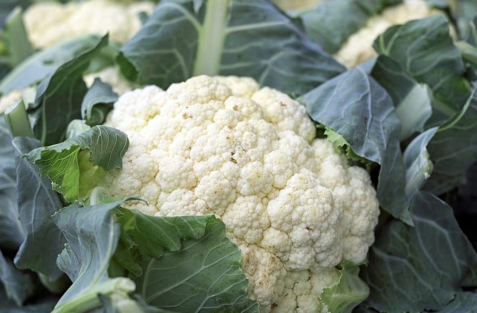 Ccauliflower