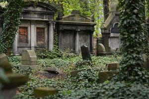 Old burial crypts and headstones, streaked and stained with time, covered with climbing ivy and set into a forest.