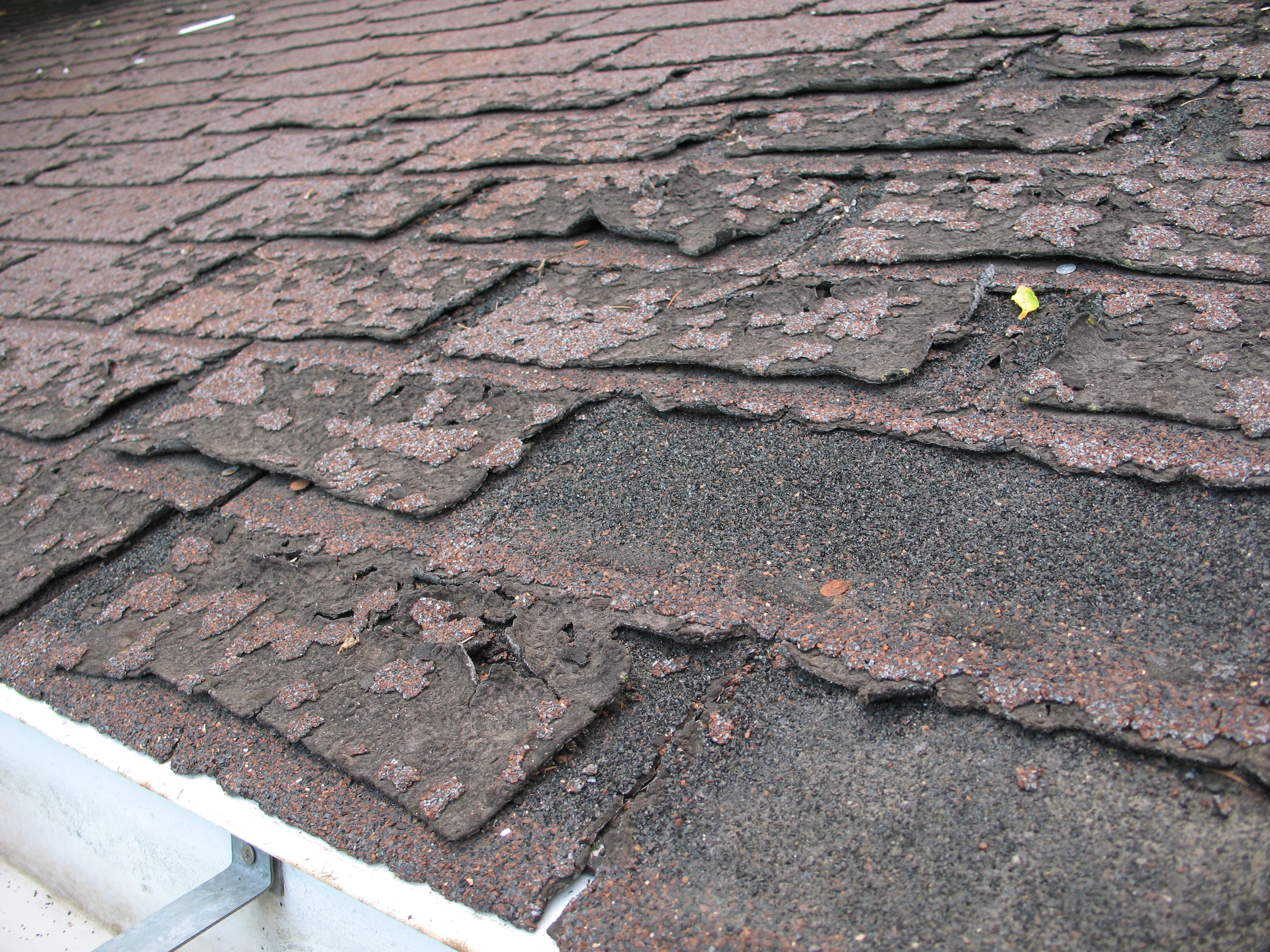Failure of asphalt shingles allowing roof leakage; image by Dale Mahalko, CC BY-SA 3.0, via wikimedia.org, no changes.