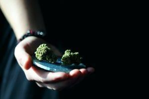 Cannabis and Opioid Co-use May Cause More Harm Than Good