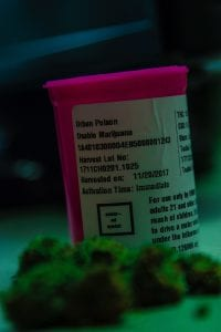 Pink prescription bottle for medical marijuana; image by LexScope, via Unsplash.com.