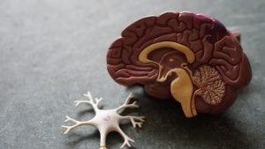 Sacramento Pays $5.2 Million After a Man Suffers Brain Damage