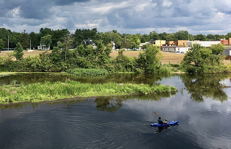 A kayaker paddles through a calm, serene river with plenty of green trees and water plants nearby.