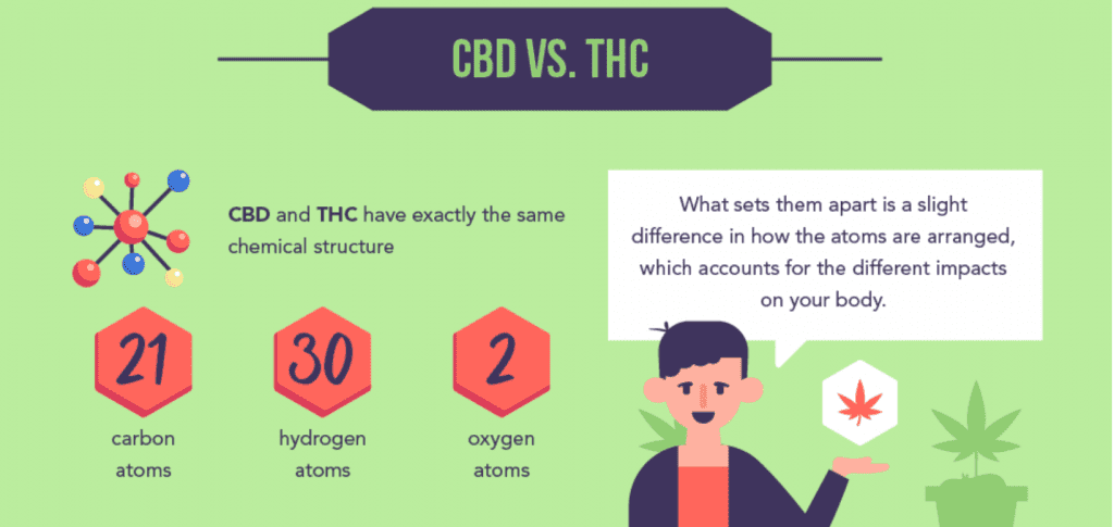 CBD vs. THC; graphic courtesy of author.