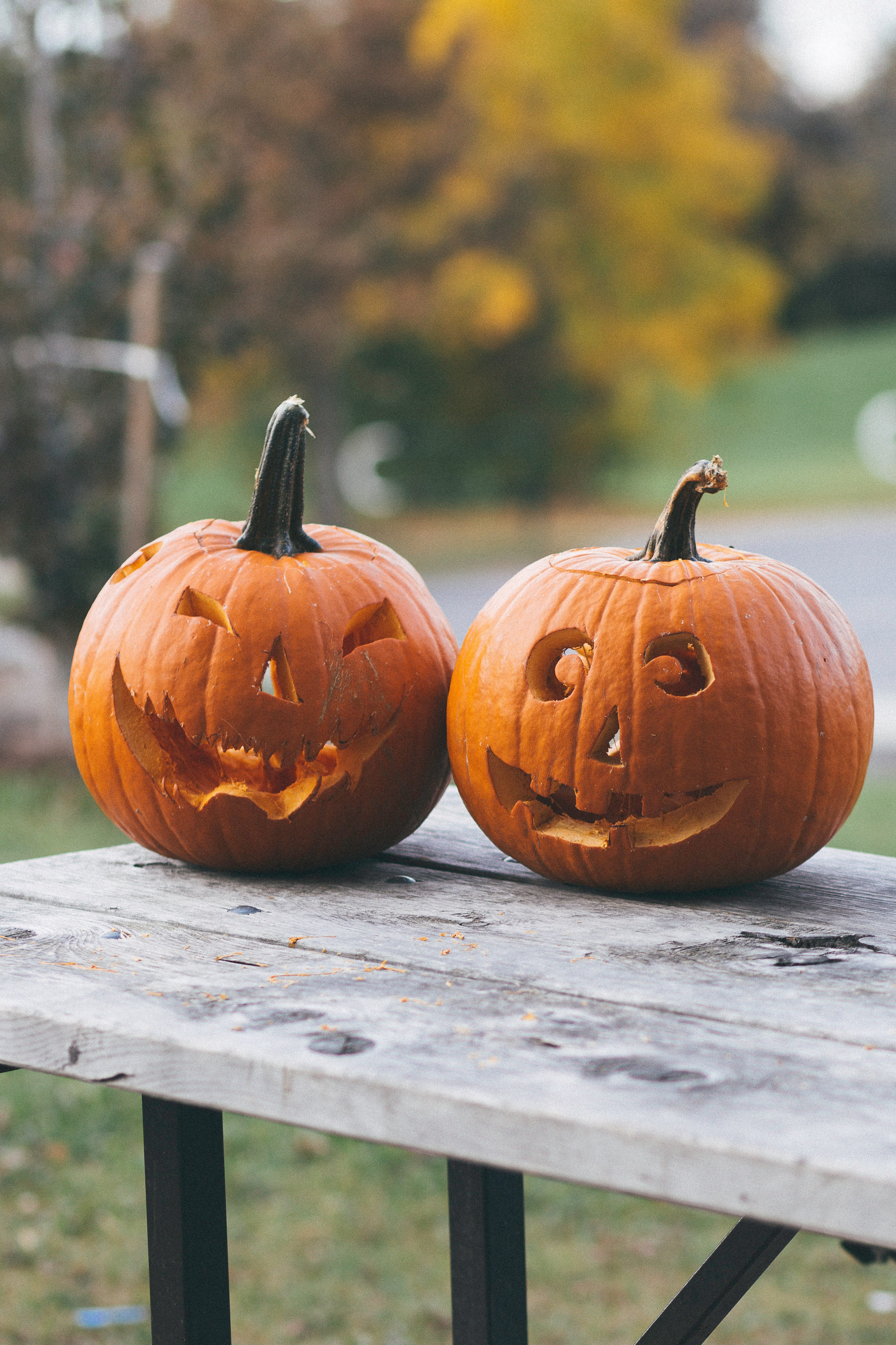 School Bans Halloween Festivities, but Not District-wide