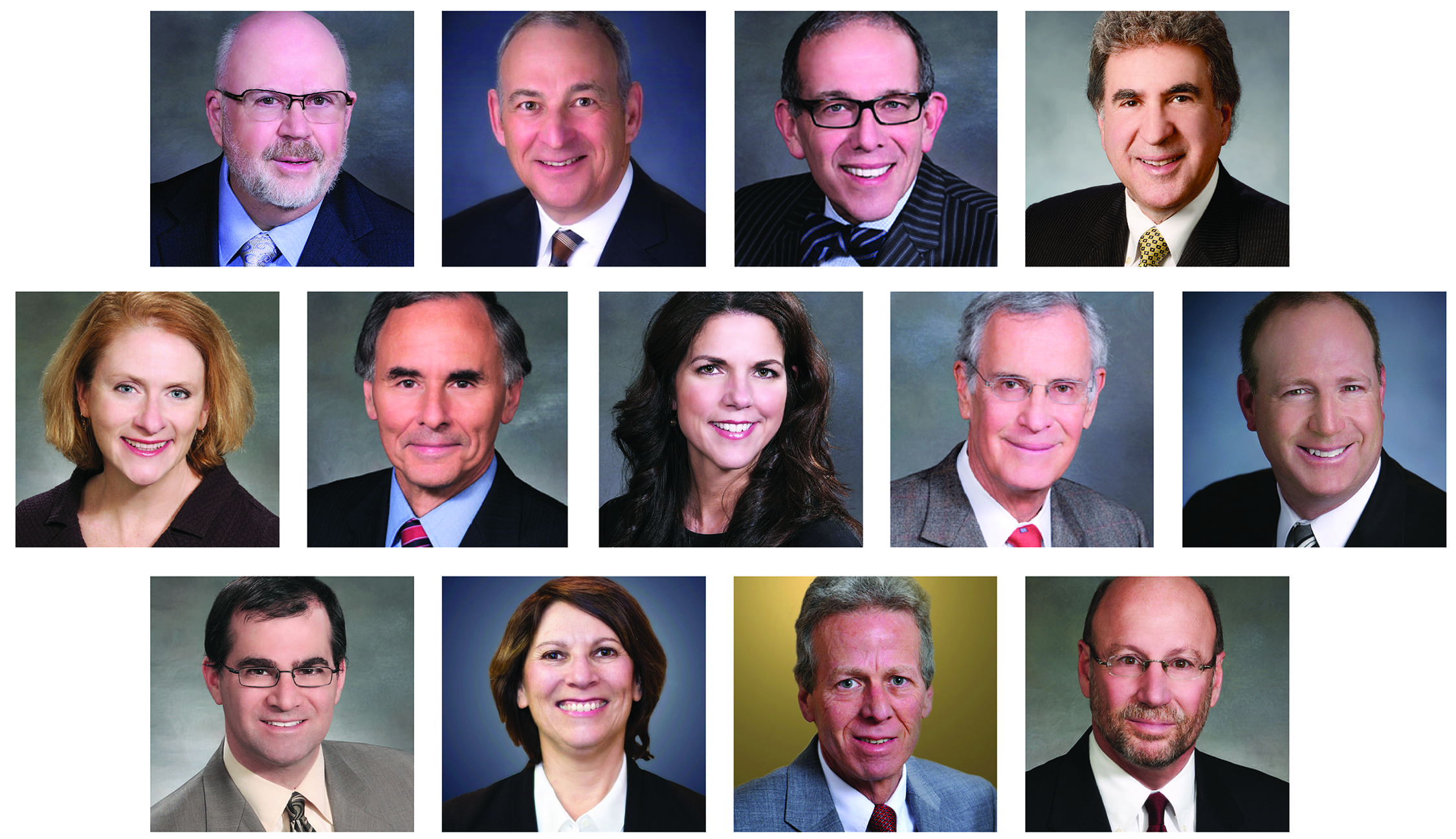 The attorneys are pictured in alphabetical order as they are listed in the article. Image courtesy of Maddin Hauser.