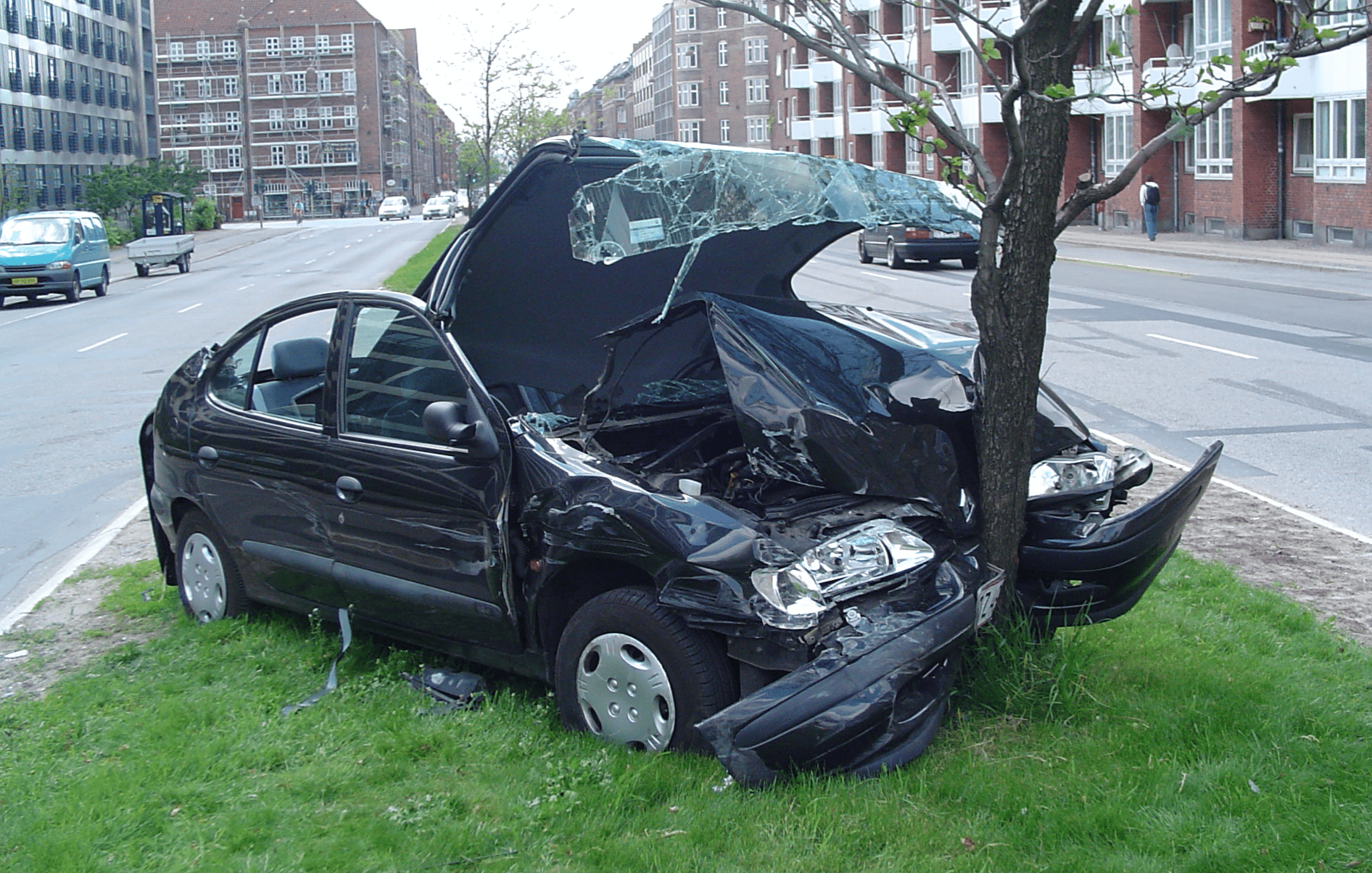 Black sedan in head-on collision with tree; image by Thue, via Wikimedia Commons, CC0.