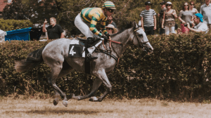 Horses racing around a track; image by Jeff Griffith, via Unsplash.com.