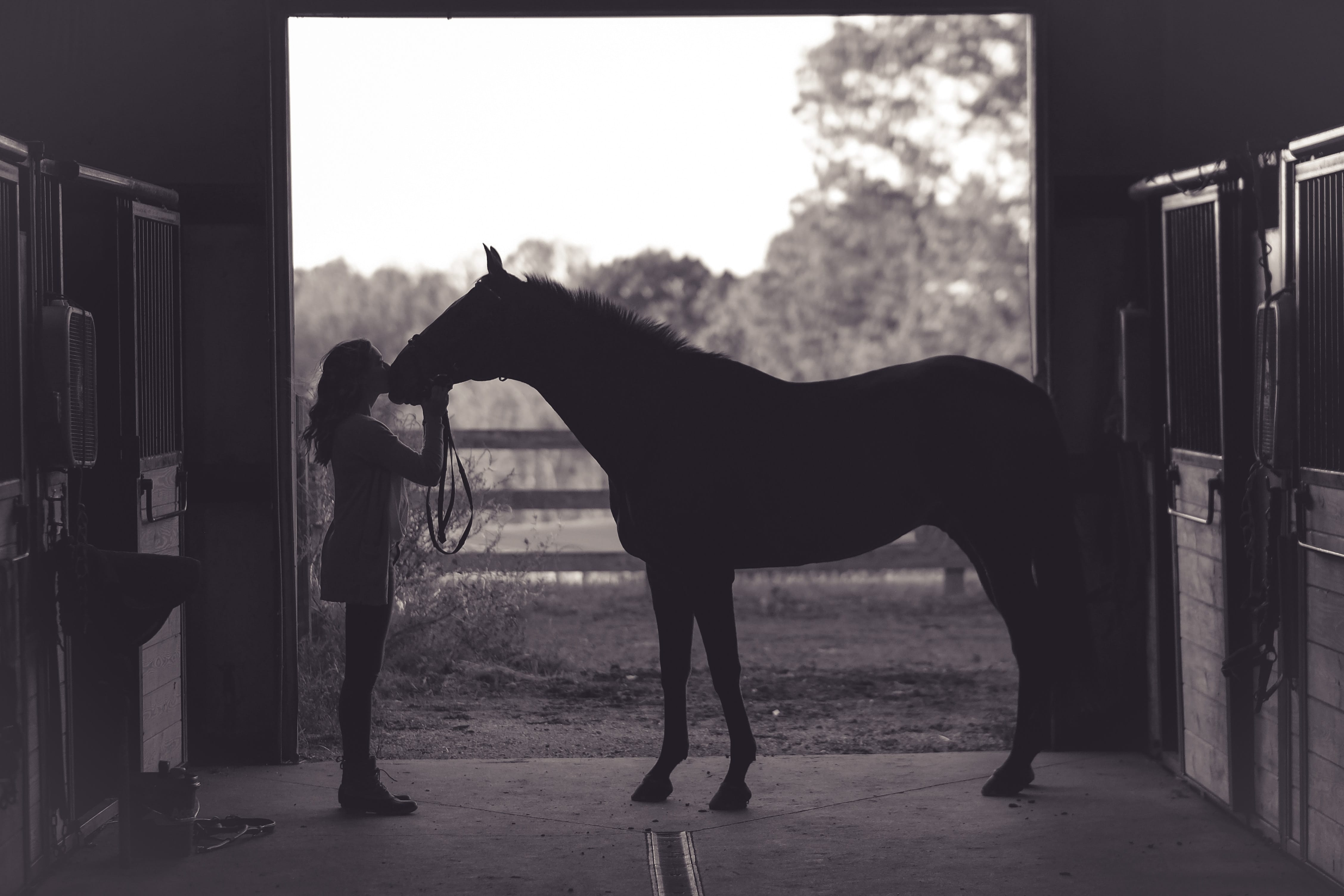Grayscale photo of woman and horse in stable; image by Kenny Webster, via Unsplash.com.