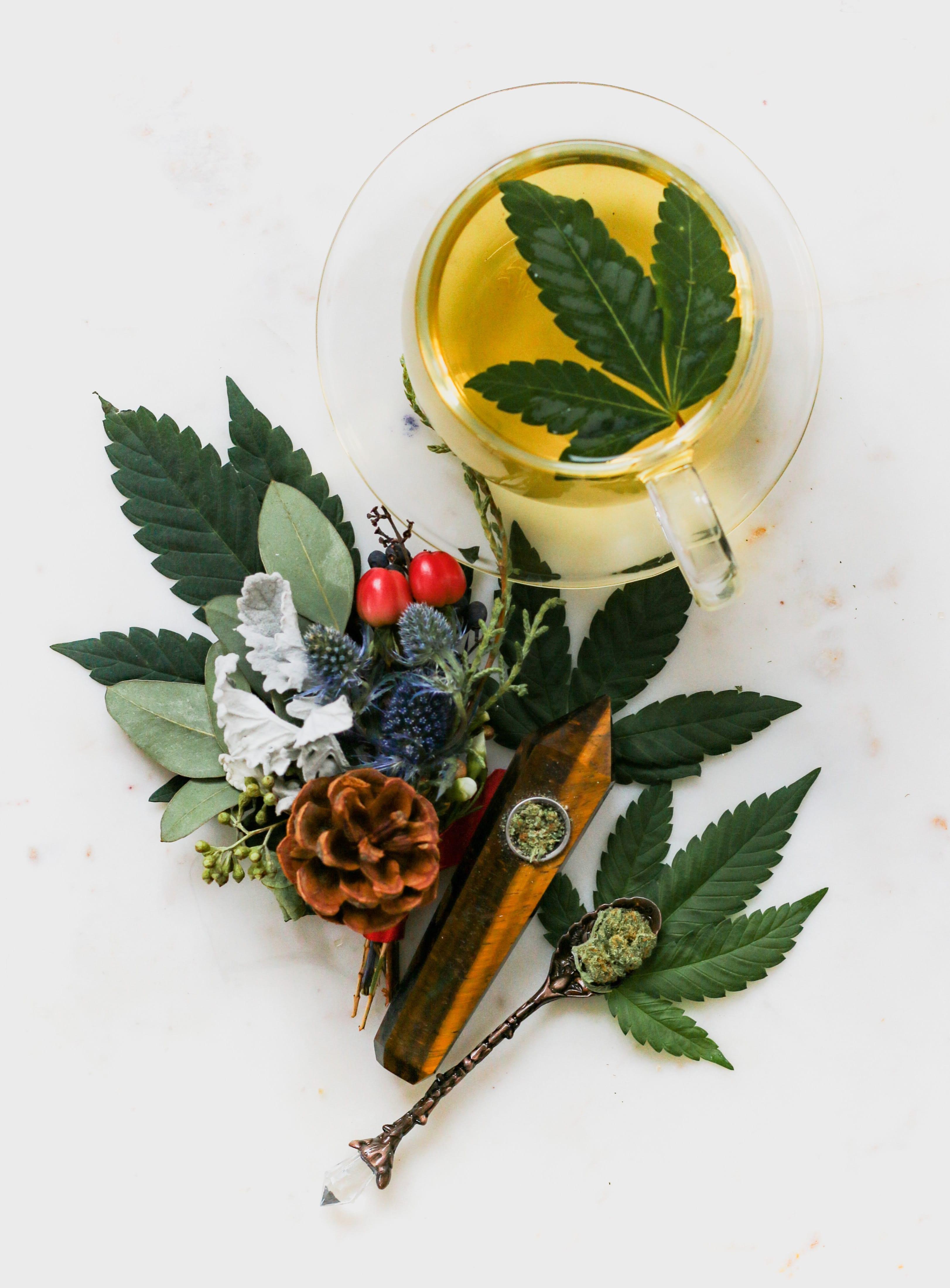 Marijuana tea with various herbs; image by Kimzy Nanney, via Unsplash.com.