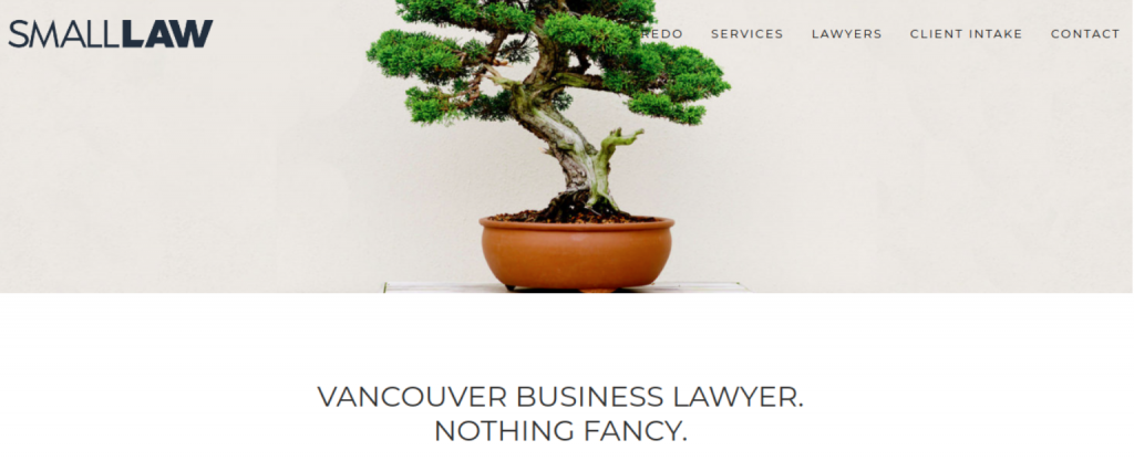 Small Law homepage; image courtesy of small.law.