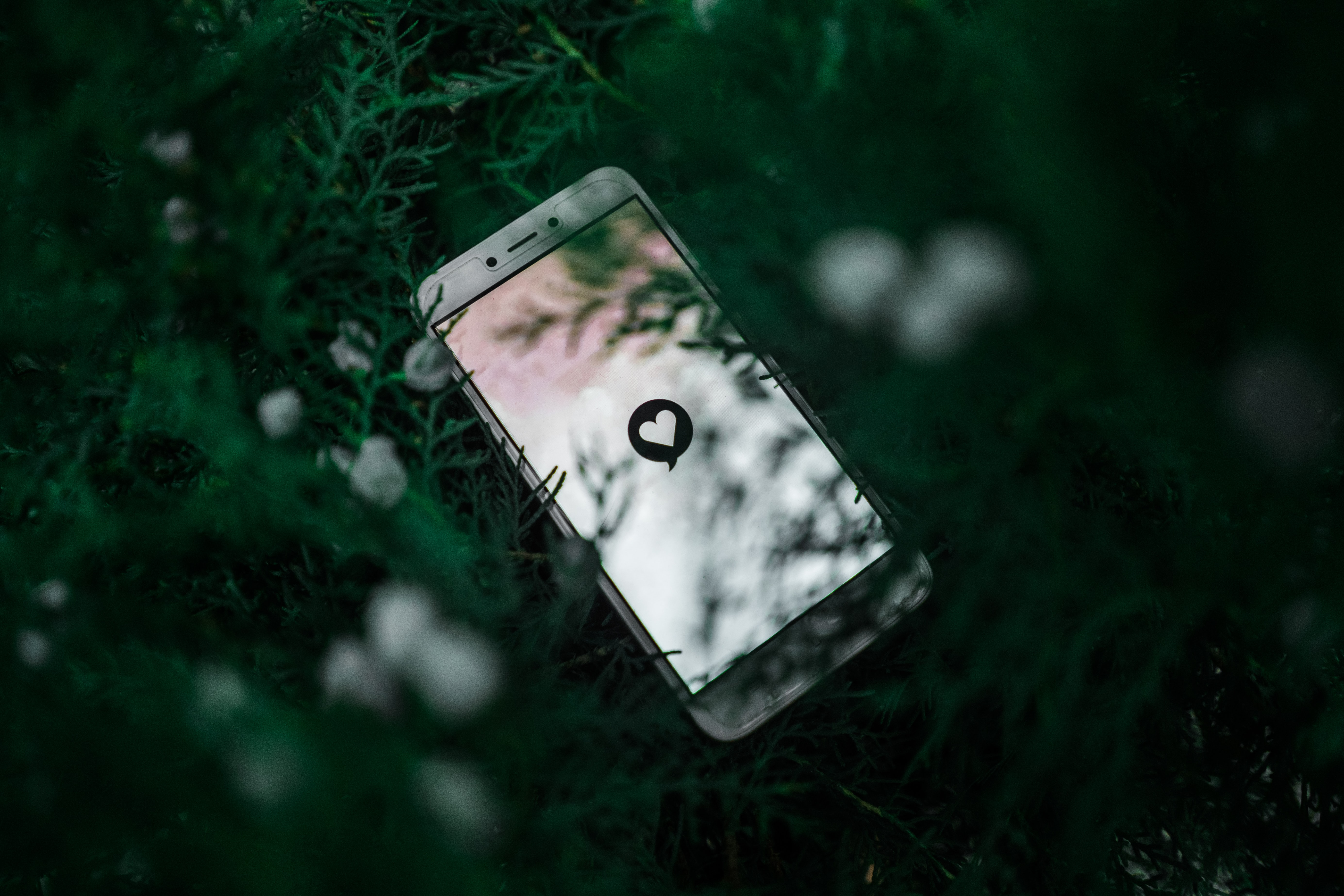 Cellphone in green bush, screen showing comment bubble with heart in it; image by Pratik Gupta, via Unsplash.com.