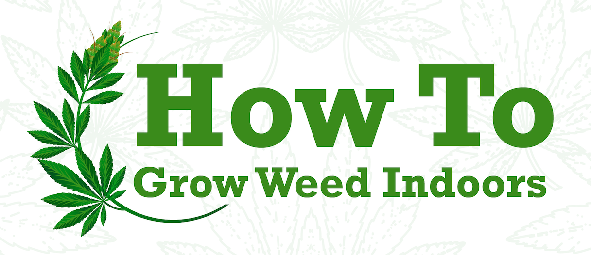 How to Grow Weed Indoors; graphic courtesy of author.