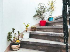 Potted plants on a staircase; image by Kolar.io, via Unsplash.com.