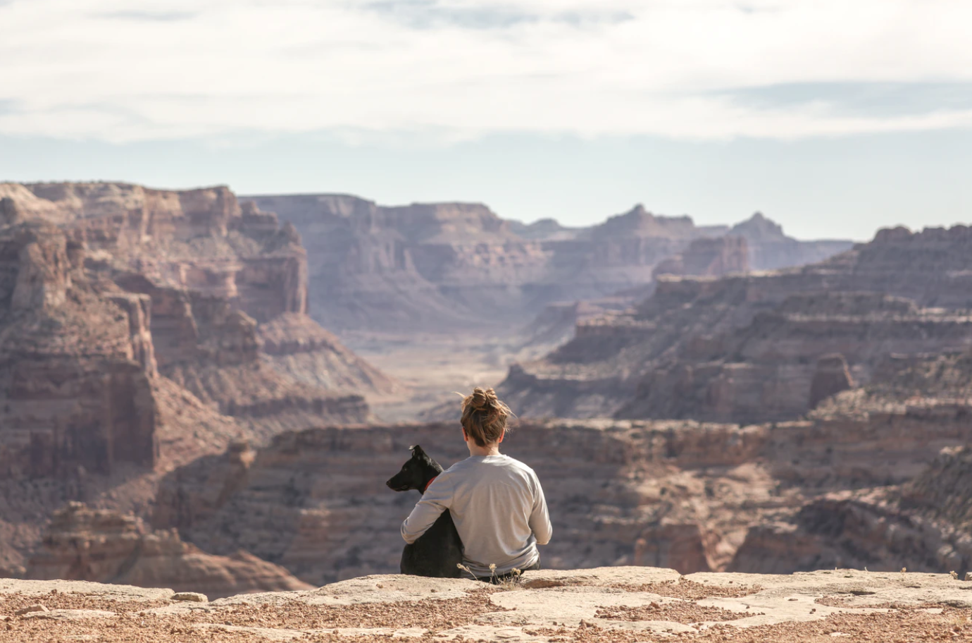 Man and dog overlooking canyon; image by Patrick Hendry, via Unsplash.com.