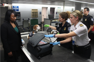 Woman and dog at security station; image by CDC, via Unsplash.com.