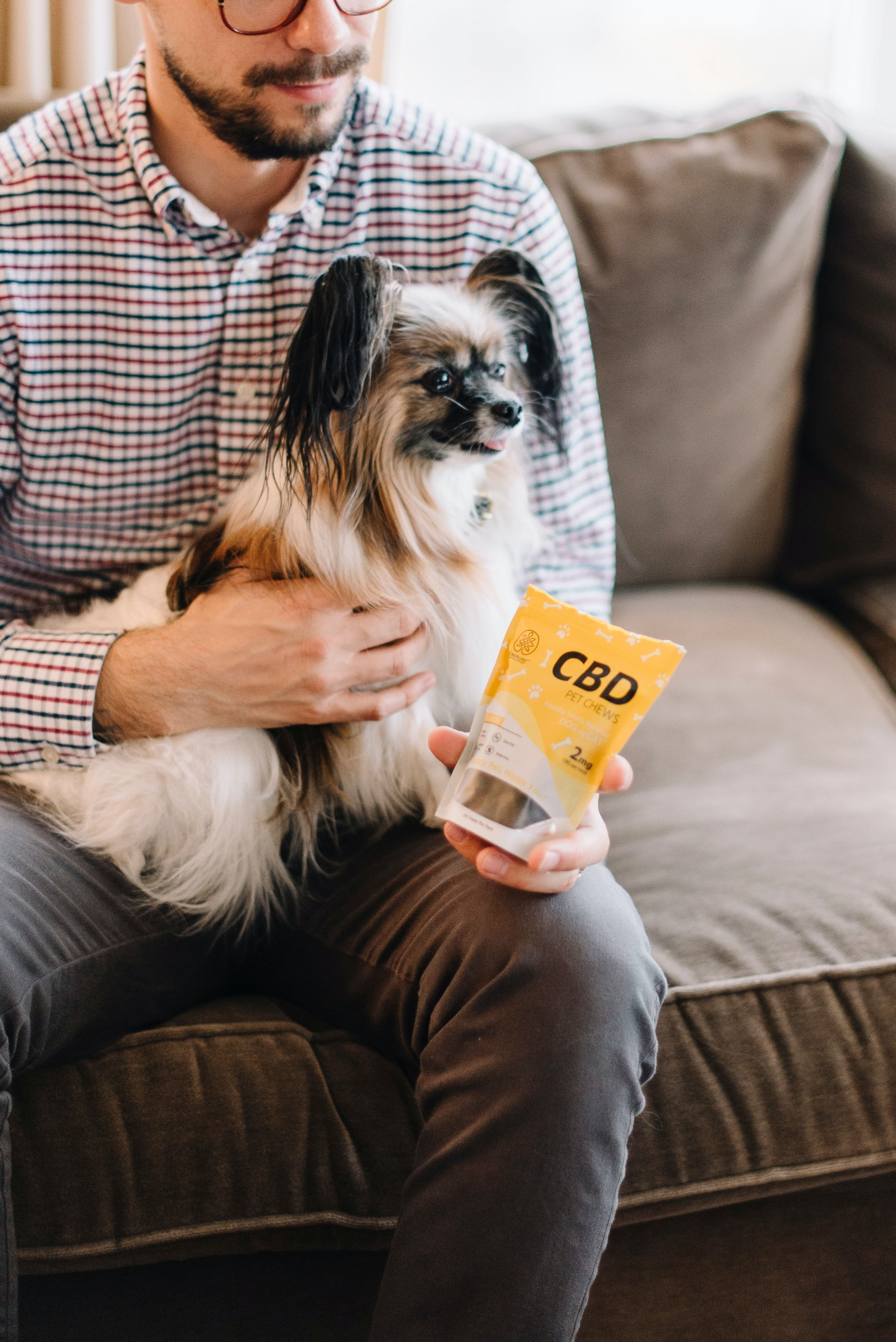 CBD pet treats. Image by Sohini, via Unsplash.com.