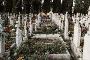 Cemetery with flowers; image by Anton Darius, via Unsplash.com.