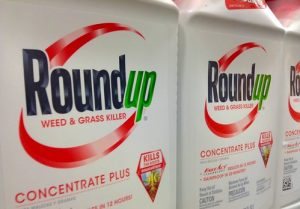 Packages of Roundup weedkiller on a retail shelf.