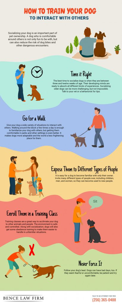 Dog Interaction Infographic courtesy of author.