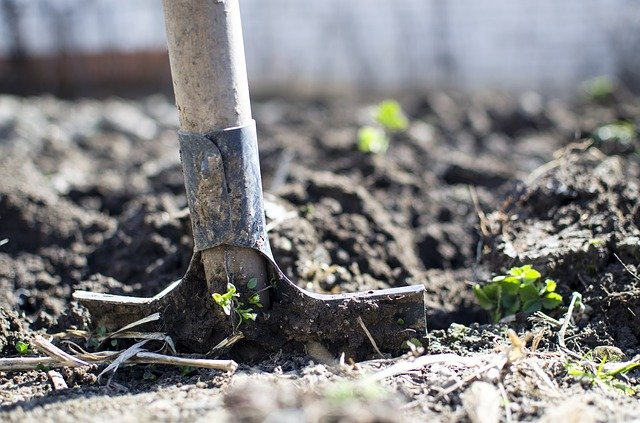 A shovel in the dirt