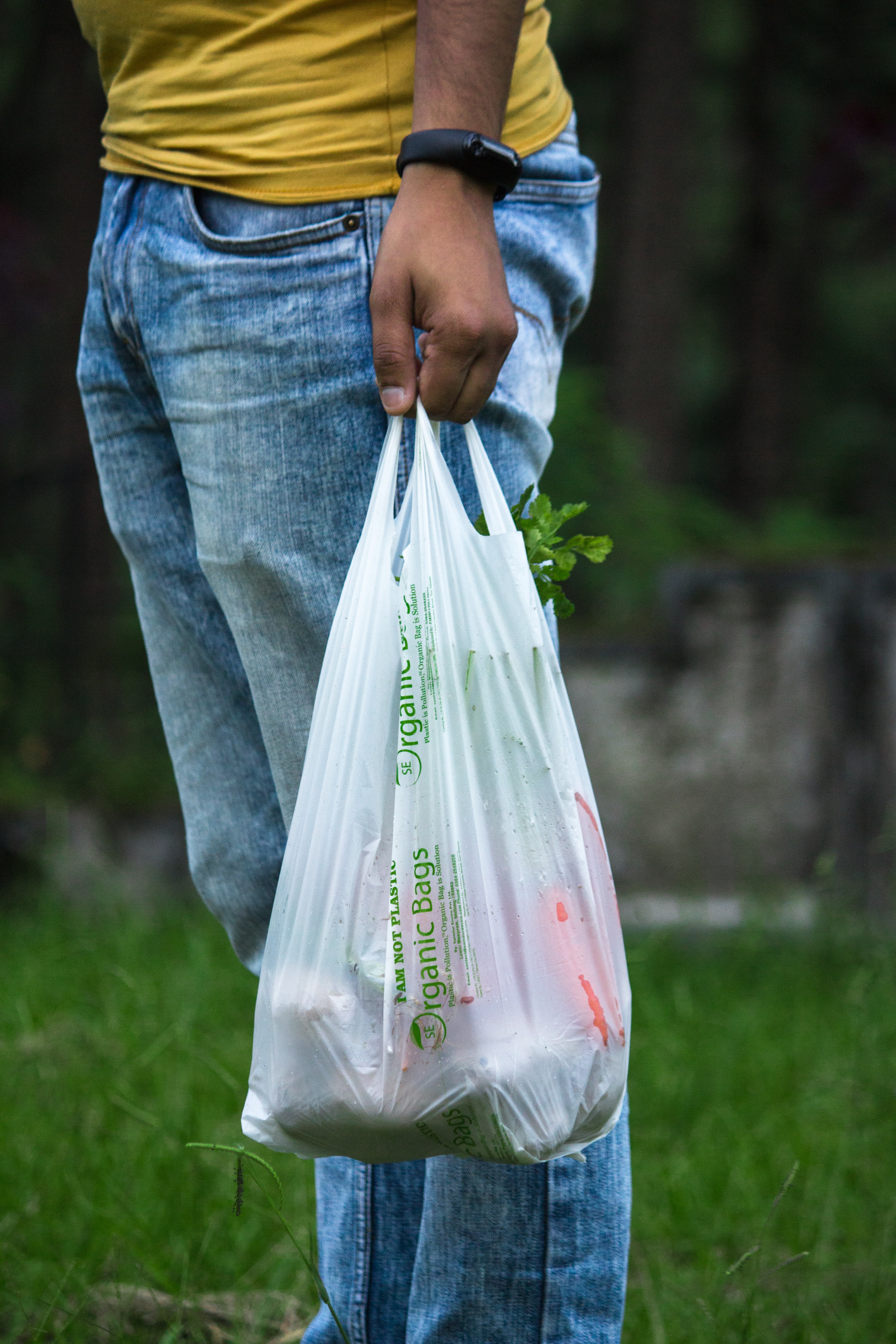 Greenpeace Sues Walmart for Misleading Product Labels