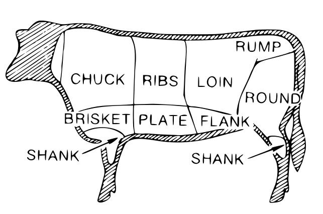 A line-drawn chart showing where the various cuts of beef are on a steer.
