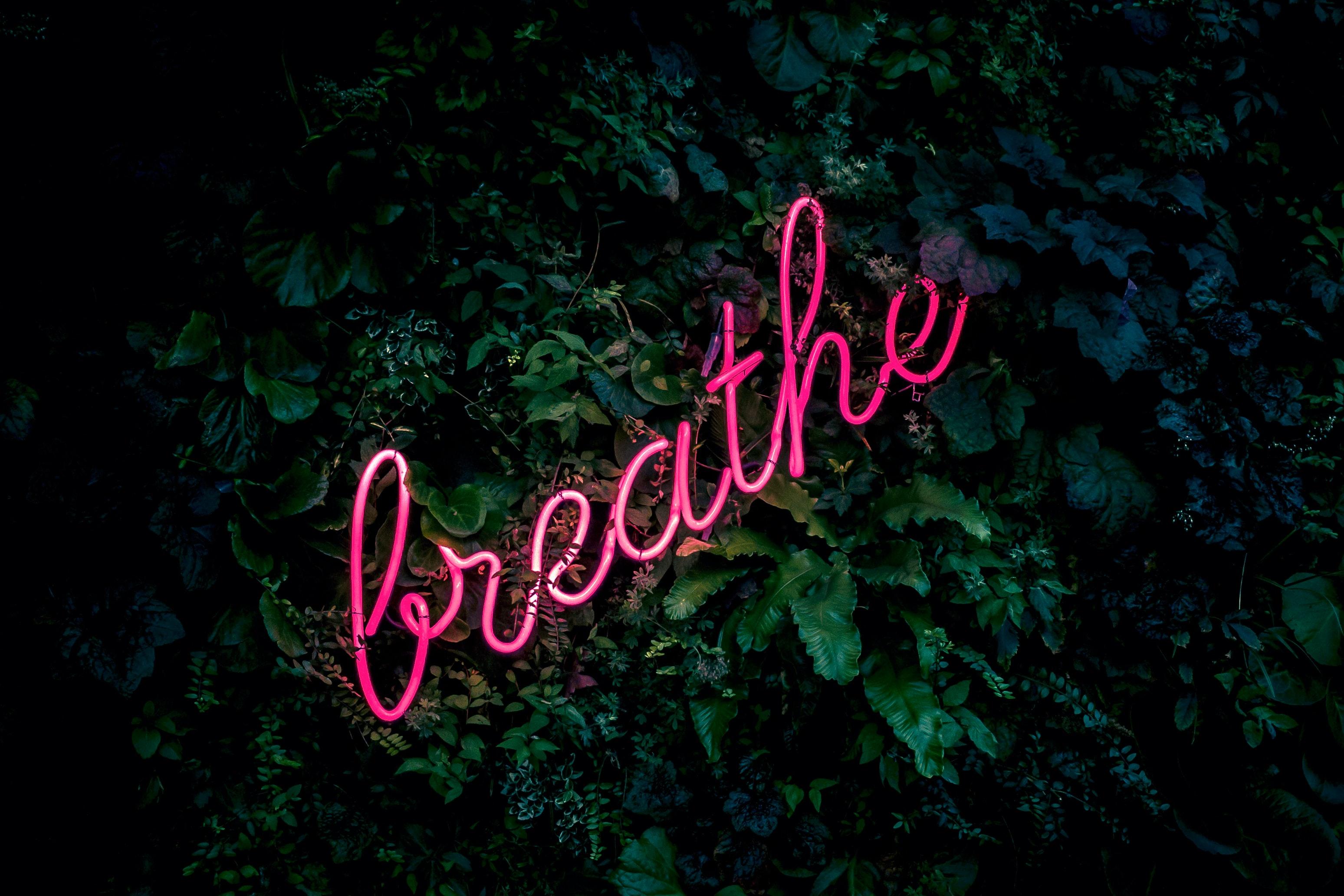 Image by Fabian Moller, via Unsplash.com.