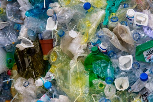 Survey Shows Most Americans Are Preserving Their Plastics
